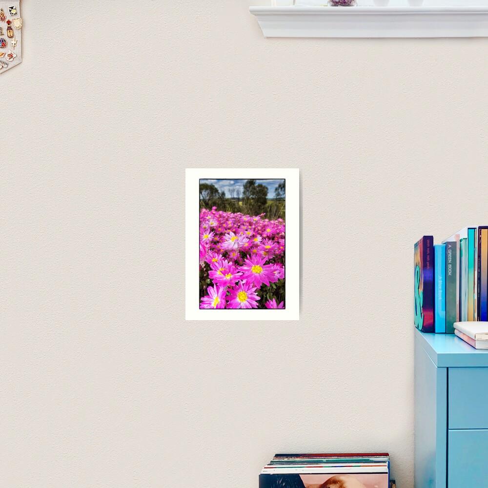 Carpet of Pink Everlastings Art Print