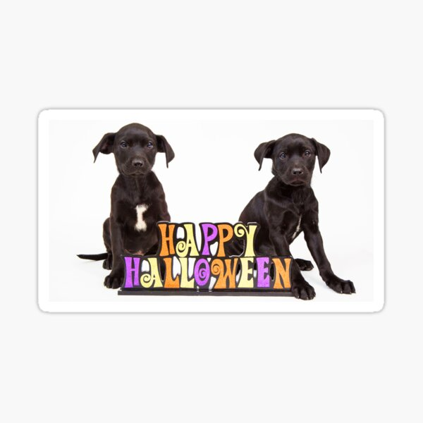 Happy Puppy Halloween Sticker