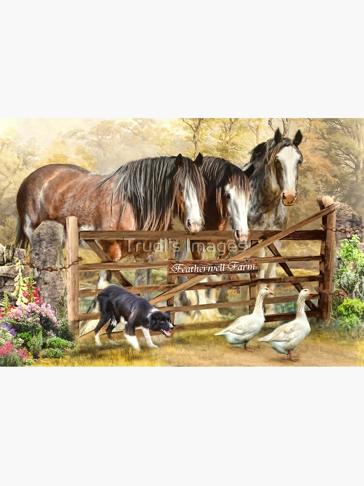 Featherwell Farm by PicsByT