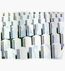 Woodlawn National Cemetery military cemetery headstones Poster