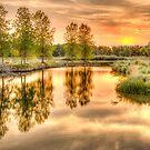 Sweet Summer Sleepy Water Sunset by Gregory J Summers