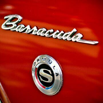 Ooooh...Barracuda by SamWarner