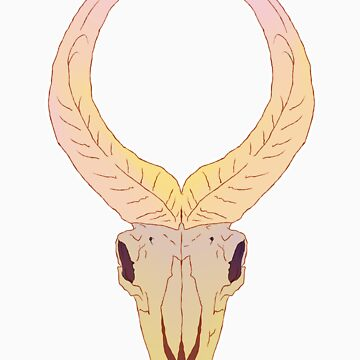 Ordon Goat Skull by AbstractBody