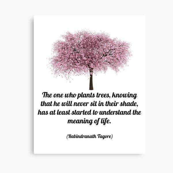 PLANT TREES Canvas Print