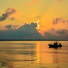 Lowcountry Fisherman by Wendy Mogul