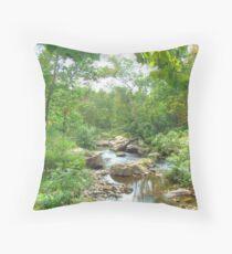 September Arrives At The Unami Creek Throw Pillow