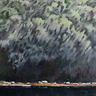 Berry Island Reserve by katsu