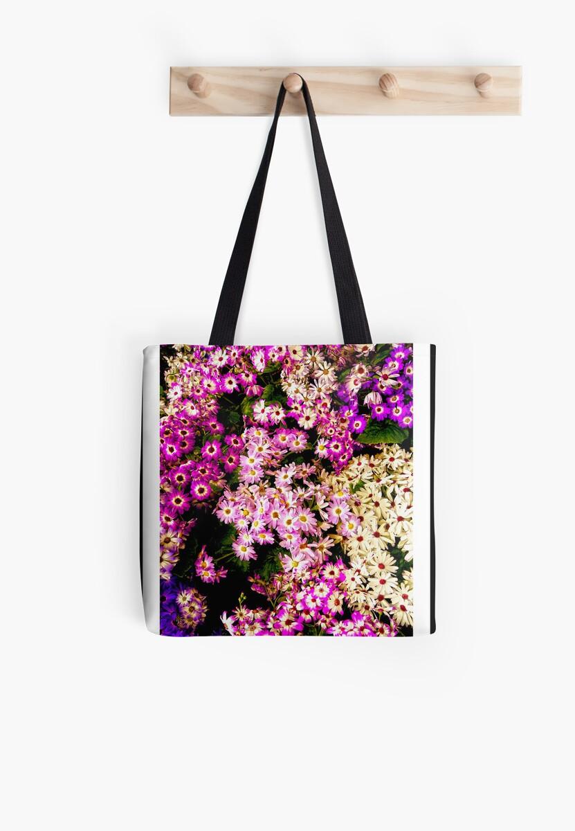 Flowers, Fitzroy Gardens by Sama-creations