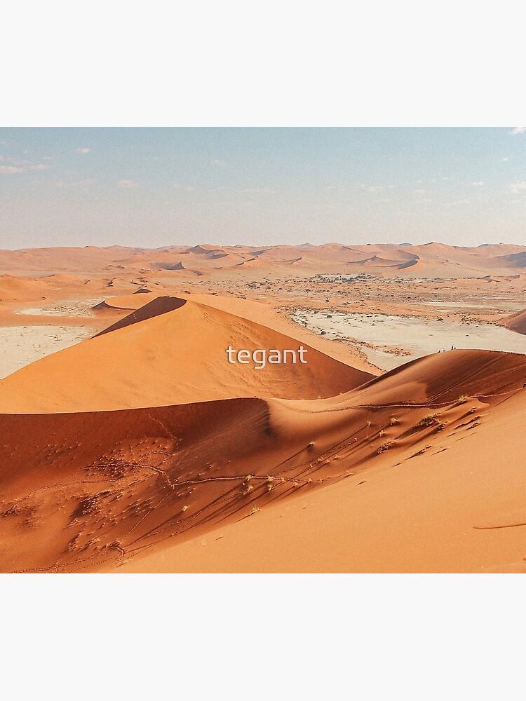 Desertscape Dunes by tegant