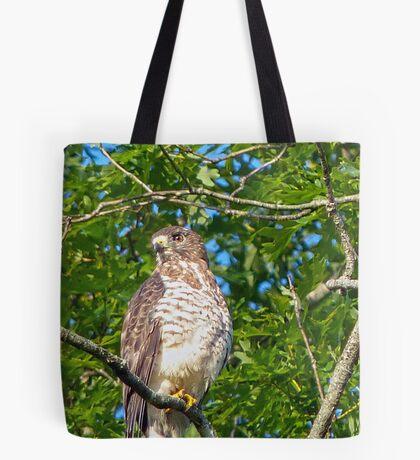 Broad-Wing Hawk Tote Bag