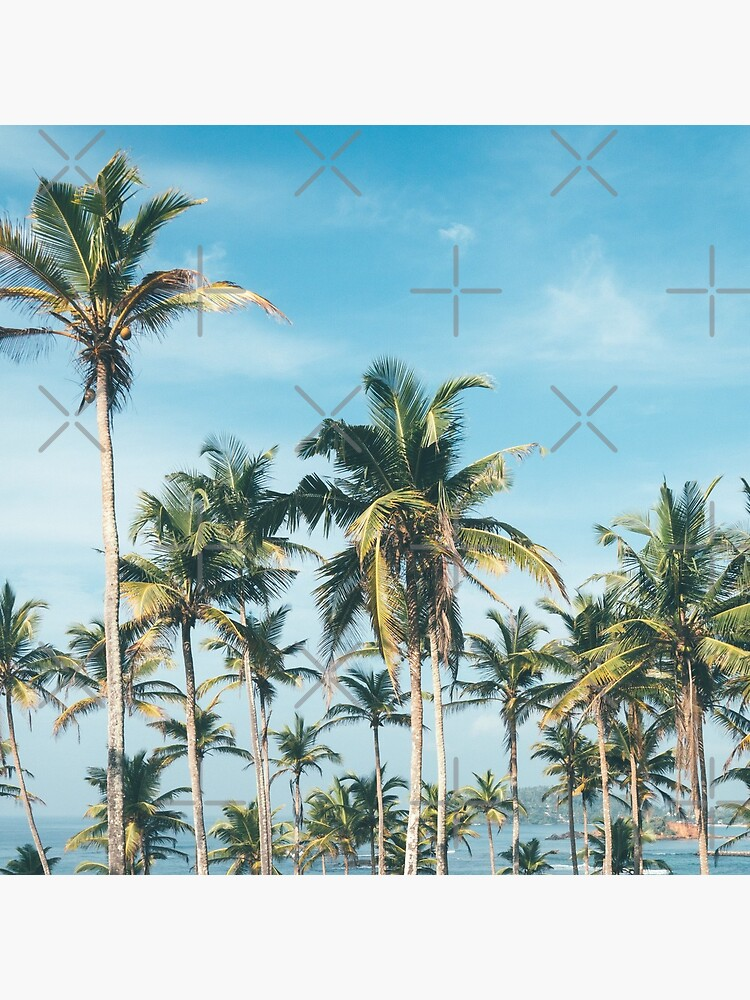 Palmtrees blue sky by ColorsHappiness