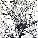 'THE GRAND OLD TREE'  by Jerry Kirk