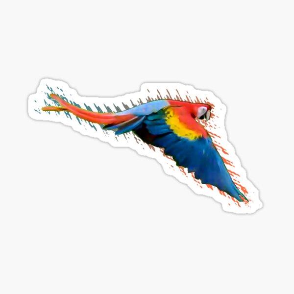 Scarlet macaw downwards wings Sticker