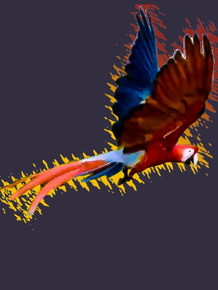 Scarlet macaw upwards wings by ARCASrescate