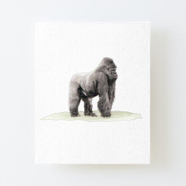 Silverback Gorilla Canvas Mounted Print