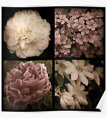 Vintage Flower Collage Poster