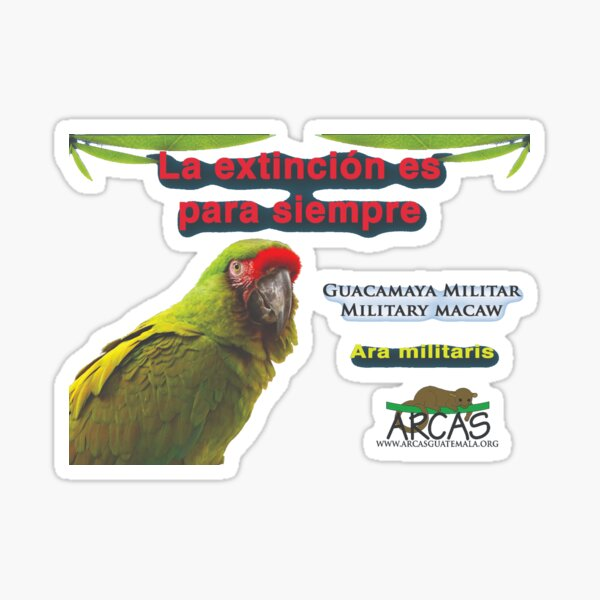 Extinction is for ever: military macaw Sticker