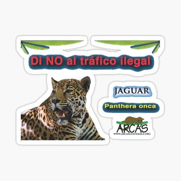 Say no to illegal traffic; jaguar Sticker