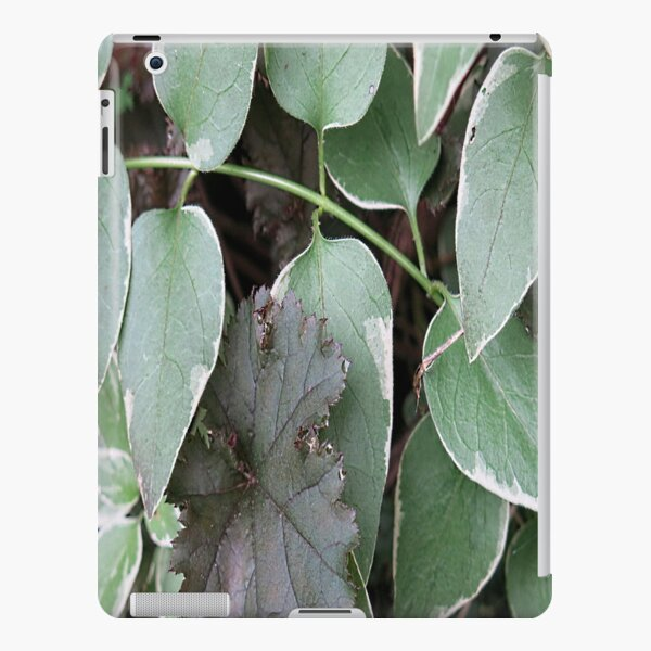 Green vinca view iPad Snap Case