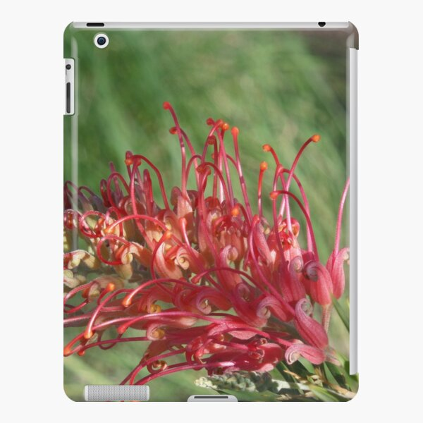 Red Blooms Los Angeles iPad Snap Case
