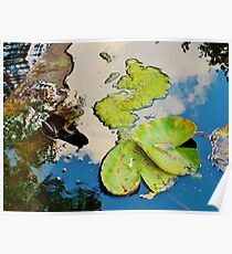 Lily Pad Frogger Poster