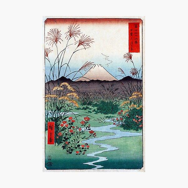 Utagawa Hiroshige Ōtsuki Plain in Kai Province Photographic Print