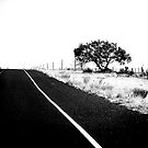 On The Road In Marfa by Rebecca Dru
