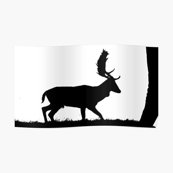 Silhouette of a Deer Poster