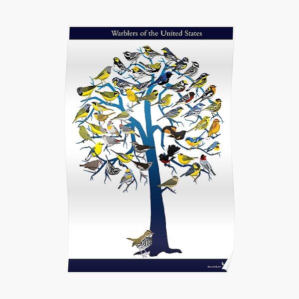 Warbler Tree Poster