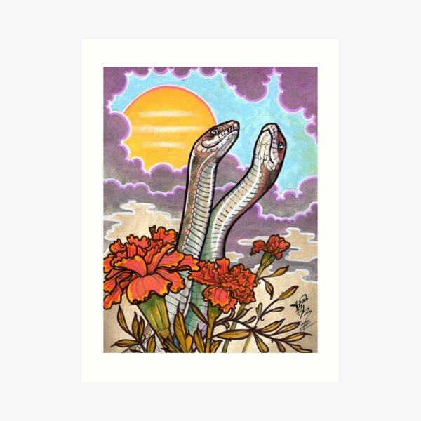 the rites of spring. (mating snakes) Art Print