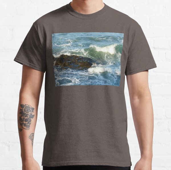 Late afternoon light from Tongue Point Classic T-Shirt