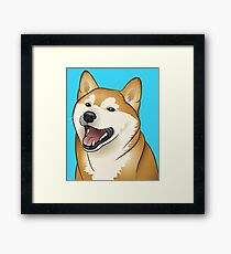 Shiba Inu Framed Print