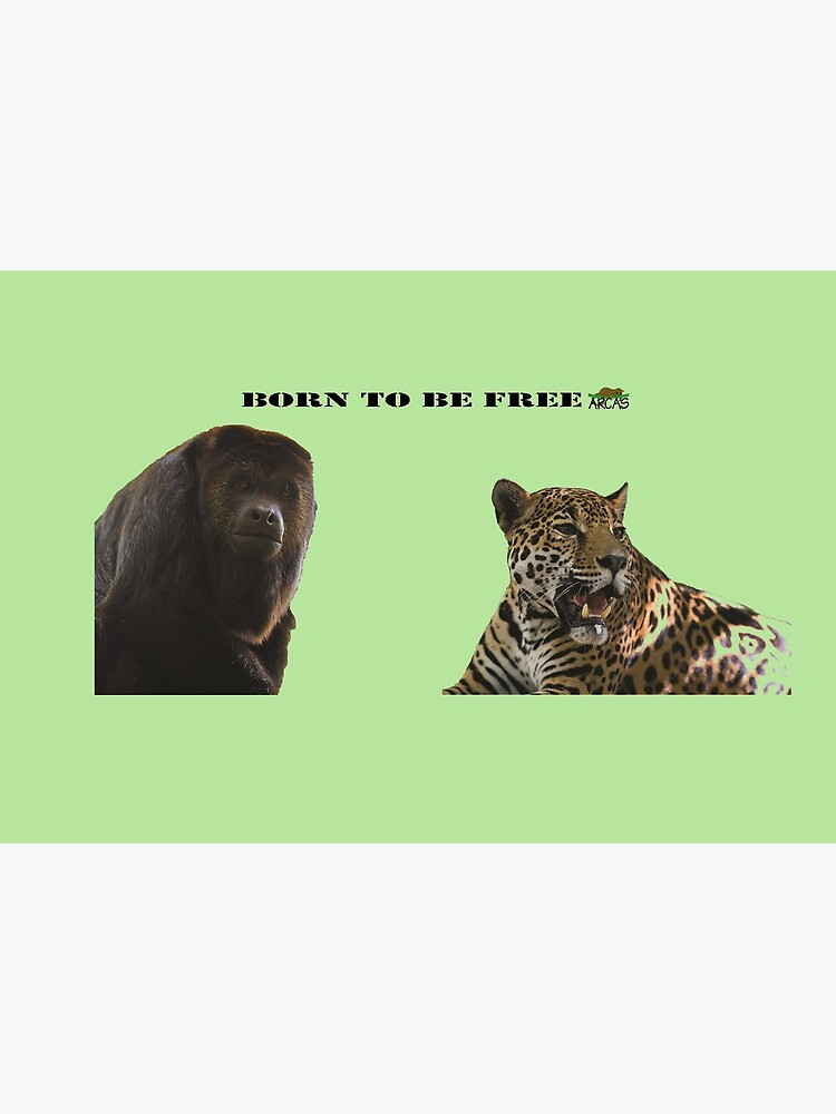 Born to be free jaguar and monkey by ARCASrescate