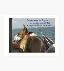 Sayings 'Dogs are not intelligent' Art Print