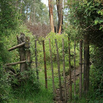 Barbed Wire and Post Gate by rhamm