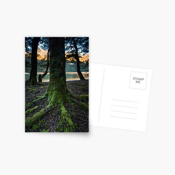 Mavroa. Postcard