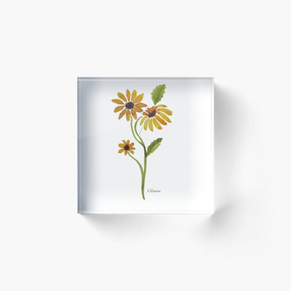 brown eyed Susan Acrylic Block