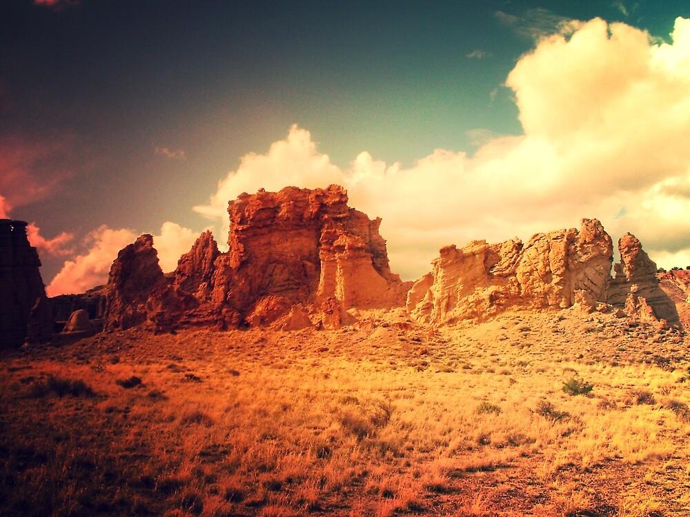 Desert Sun by Astrid Allan
