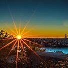 Sunrise Flowers by James Meyer