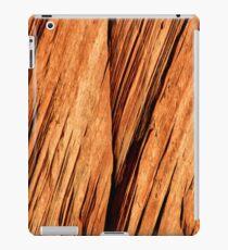 Zion National Park rockface iPad Case/Skin