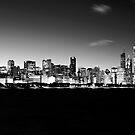 B&W Chicago Skyline by Steve Ivanov