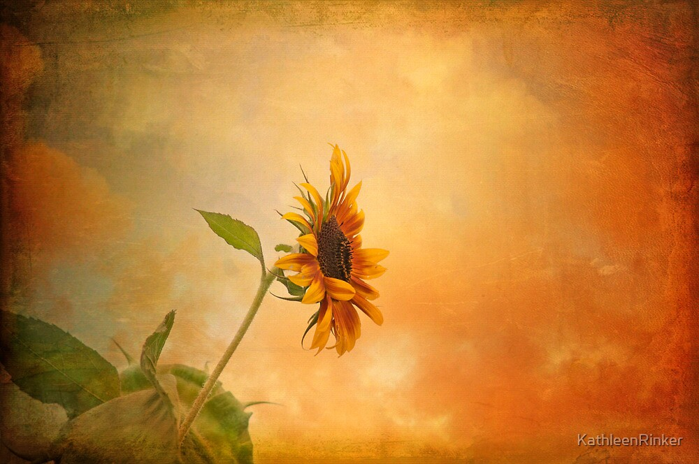 Sundown by KathleenRinker