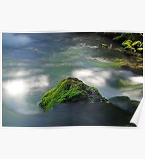 Mossy Rock in Big Spring Poster