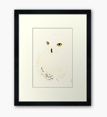 Nyctea Scandiacus Framed Print