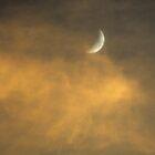 Carolina Moon von Leon Heyns