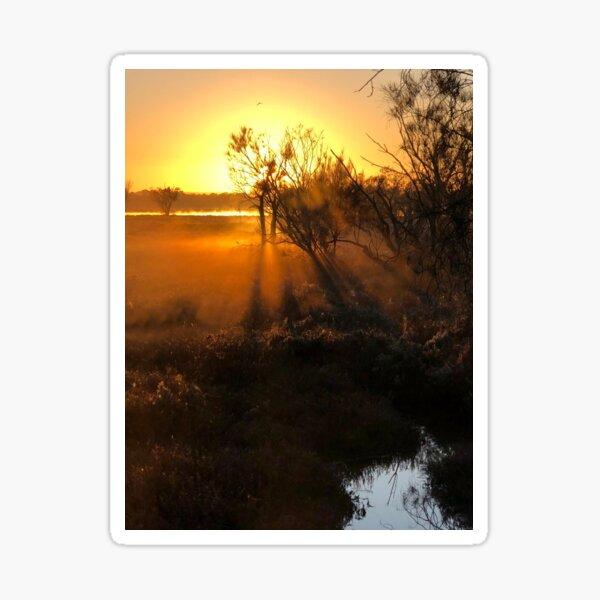 Radiant Sunrise  Sticker