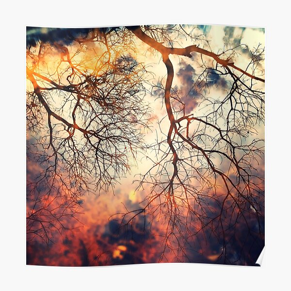 Stormy Reflections, Winter Poster