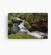 Waterfall at Aira Force Canvas Print