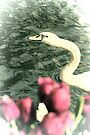 Snakelike by Jasna