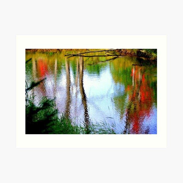 Early Fall Reflections ! Art Print